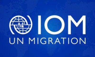 UN Migration