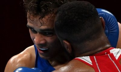 Moroccan Boxer