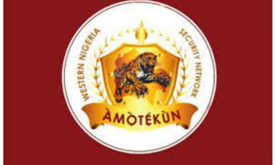 amotekun